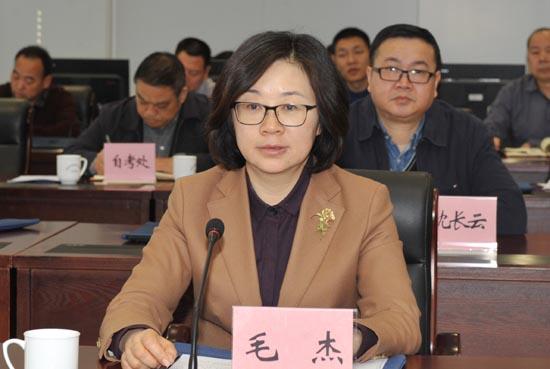图二:省教育厅党组成员、副厅长毛杰出席会议并讲话.JPG
